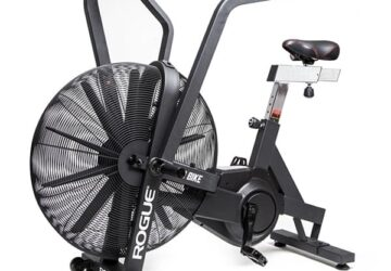 Rogue Echo Airbike review 2020 (1)